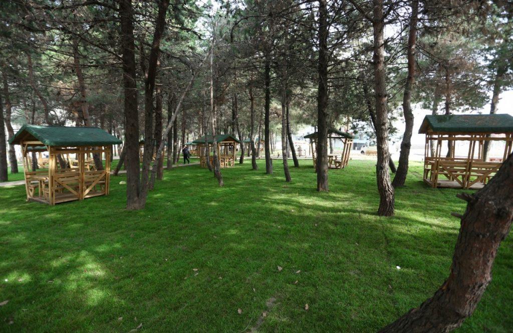 Meşe Park Ormanı (Canik Doğal Yaşam Parkı)
